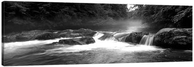 Great Smoky Mountains National Park, Little Pigeon River, River Flowing Through A Forest Canvas Art Print