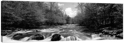 Little Pigeon River, Great Smoky Mountains National Park, Sevier County, Tennessee, USA Canvas Art Print