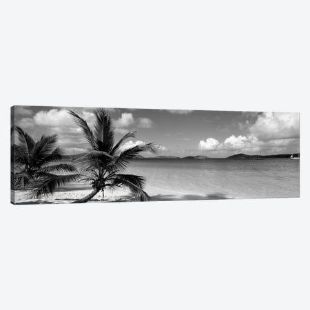 Salomon Beach Us Virgin Islands Canvas Print #PIM15219} by Panoramic Images Art Print