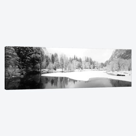 Snow Covered Trees In A Forest, Yosemite National Park, California, USA Canvas Print #PIM15231} by Panoramic Images Art Print