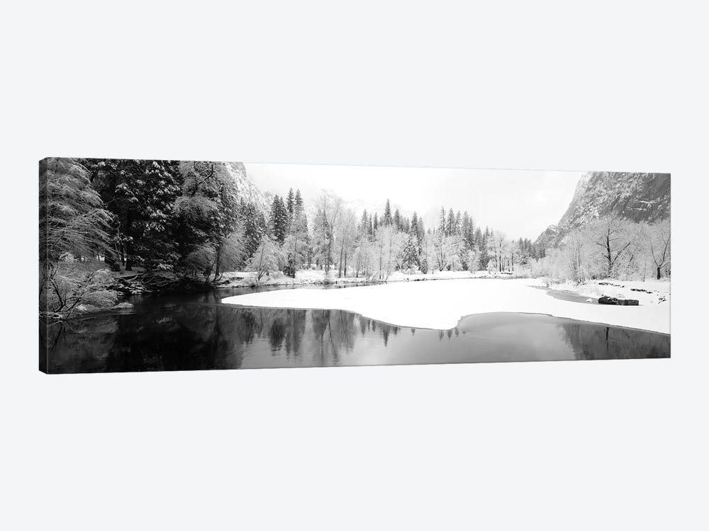 Snow Covered Trees In A Forest, Yosemite National Park, California, USA by Panoramic Images 1-piece Art Print
