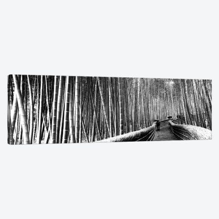 Stepped Walkway Passing Through A Bamboo Forest, Arashiyama, Kyoto Prefecture, Kinki Region, Honshu, Japan Canvas Print #PIM15238} by Panoramic Images Canvas Print