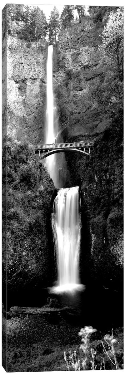 Waterfall In A Forest, Multnomah Falls, Columbia River Gorge, Oregon, USA Canvas Art Print