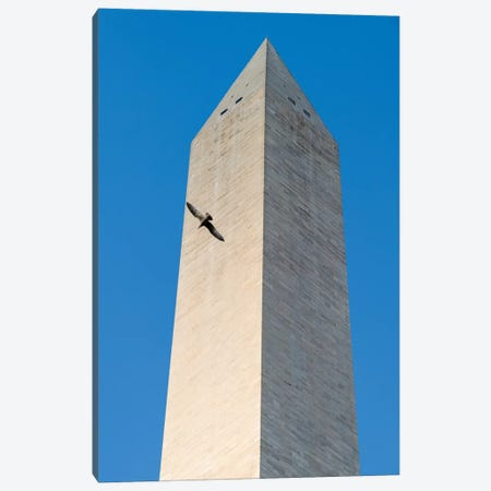 Bird flying around The Washington Monument on the National Mall in Washington DC, USA Canvas Print #PIM15384} by Panoramic Images Canvas Artwork
