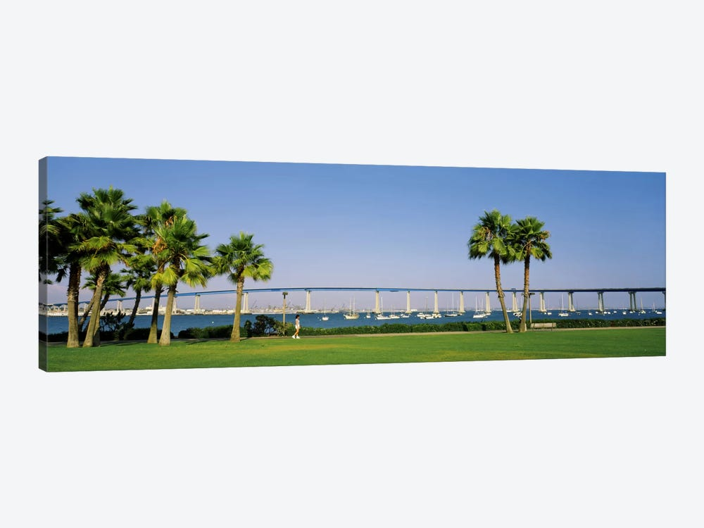 Palm trees on the coast with bridge in the background, Coronado Bay Bridge, San Diego, San Diego County, California, USA by Panoramic Images 1-piece Art Print