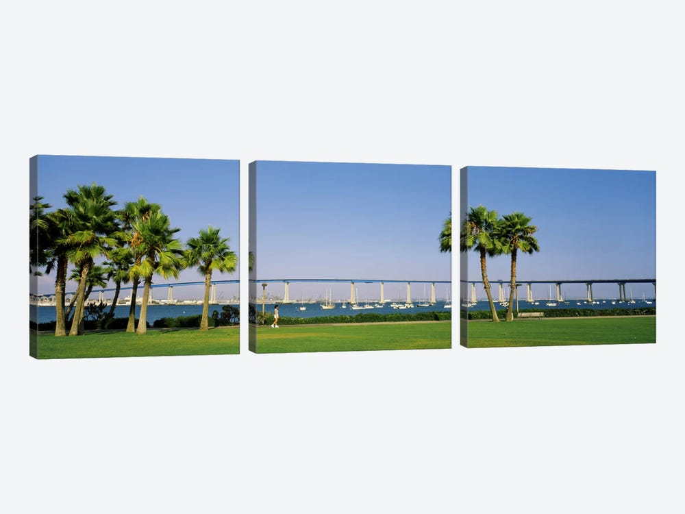 Palm trees on the coast with bridge in the background, Coronado Bay Bridge, San Diego, San Diego County, California, USA by Panoramic Images 3-piece Canvas Art Print