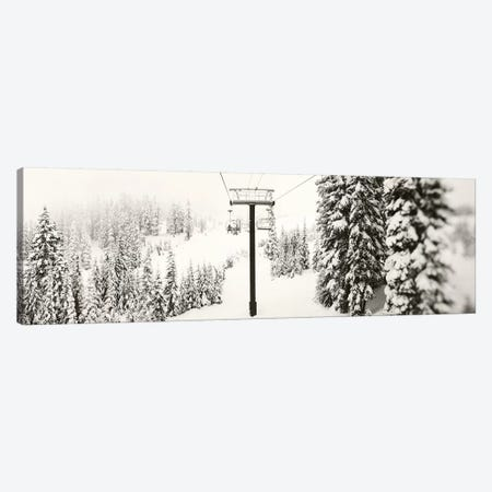 Chair lift and snowy evergreen trees at Stevens Pass, Washington State, USA Canvas Print #PIM15403} by Panoramic Images Canvas Artwork