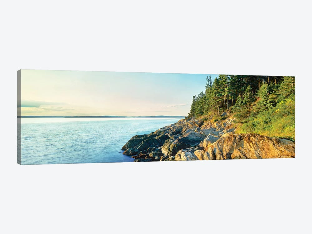 Coastline, Acadia National Park, Maine, USA by Panoramic Images 1-piece Canvas Art