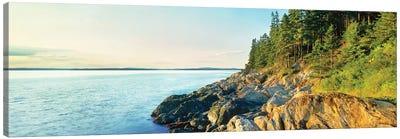 Coastline, Acadia National Park, Maine, USA Canvas Art Print
