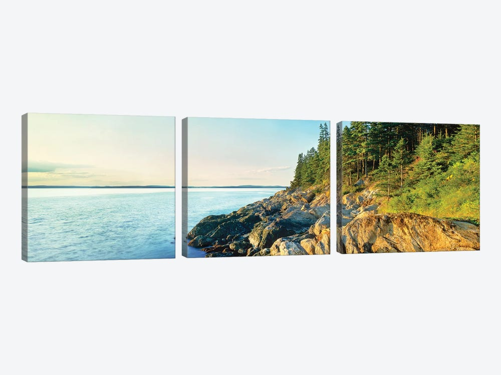 Coastline, Acadia National Park, Maine, USA by Panoramic Images 3-piece Canvas Art