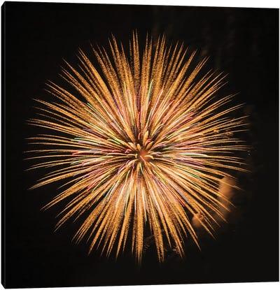 Fireworks display, Puget Sound, Washington State, USA Canvas Art Print