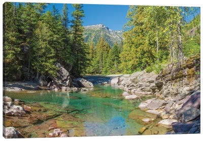McDonald Creek along Going-to-the-Sun Road at US Glacier National Park, Montana, USA Canvas Art Print