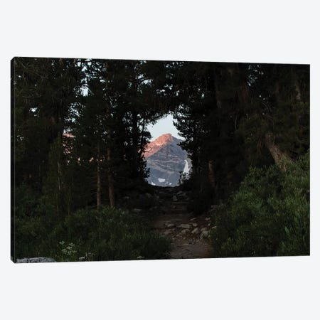Mountain seen from trees, Rock Creek, Eastern Sierra Nevada, California, USA Canvas Print #PIM15603} by Panoramic Images Canvas Artwork