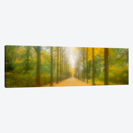 Path Schwetzingen Germany Canvas Print #PIM1561} by Panoramic Images Canvas Art