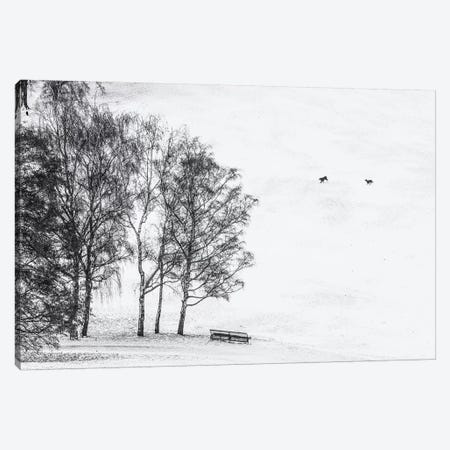 Olympia park in winter, Munich, Bavaria, Germany Canvas Print #PIM15620} by Panoramic Images Canvas Artwork
