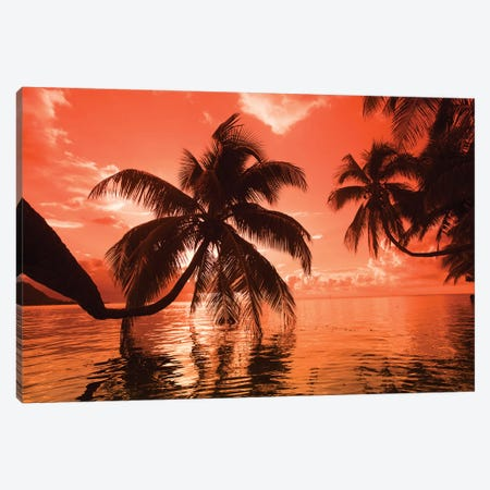 Palm trees at sunset, Moorea, Tahiti, French Polynesia Canvas Print #PIM15629} by Panoramic Images Canvas Art