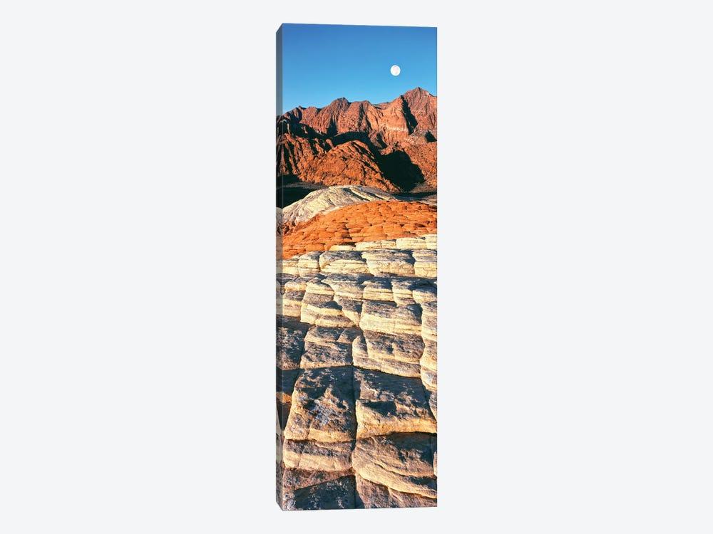 Petrified dunes, Snow Canyon State Park, Utah, USA by Panoramic Images 1-piece Art Print