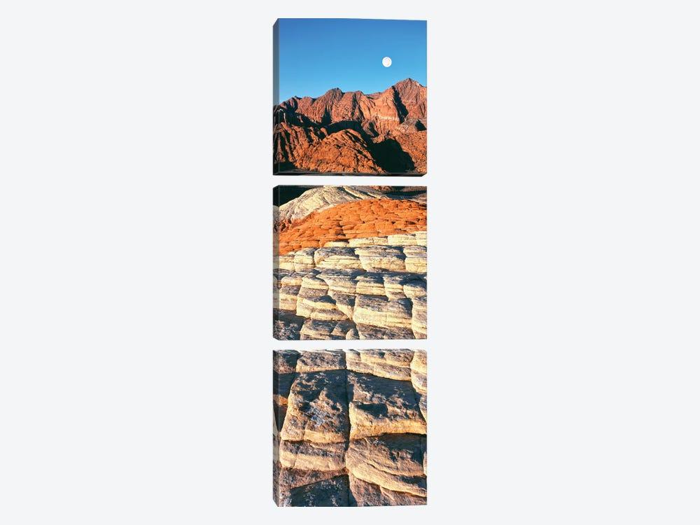 Petrified dunes, Snow Canyon State Park, Utah, USA by Panoramic Images 3-piece Art Print
