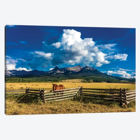 A Horse Overlooking A Worn Fence Near The San Juan Mountains, Southwestern Colorado, USA Canvas Print #PIM15689} by Panoramic Images Canvas Art