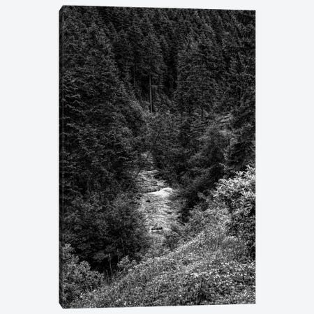 Rissbach river in Karwendel Mountains, Vorderriss, Bavaria, Germany Canvas Print #PIM15691} by Panoramic Images Canvas Print