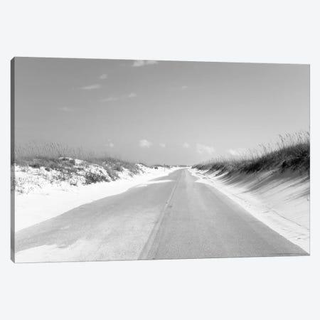 Road passing through sand dunes, Perdido Key Area, Gulf Islands National Seashore, Pensacola, Florida, USA Canvas Print #PIM15693} by Panoramic Images Art Print
