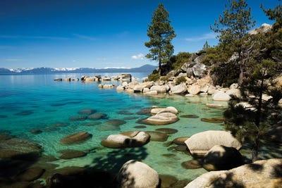 Lake Tahoe Aquarium Background Rocks in a Lake Photo North American Landscape Sierra Nevada California USA PVC Adhesive Decor Paper Cling Decals Poster Multicolor