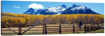 San Juan Mountains, Ridgeway, Colorado, USA Canvas Print #PIM156