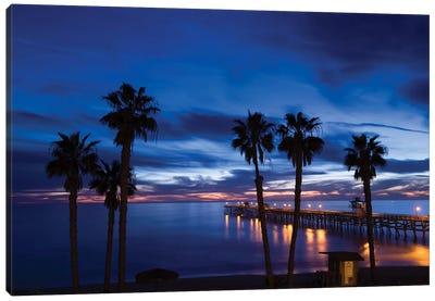 Silhouette of palm trees on the beach, San Clemente, Orange County, California, USA Canvas Art Print