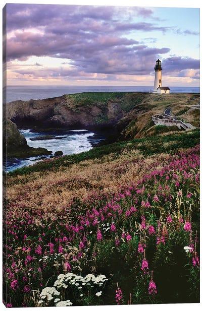 Silhouette of Yaquina Head Lighthouse, Yaquina Head, Lincoln County, Oregon, USA Canvas Art Print