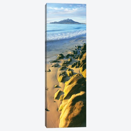 Sunrise over sea and beach, Cabo Pulmo National Park, Baja California Sur, Mexico Canvas Print #PIM15771} by Panoramic Images Canvas Art