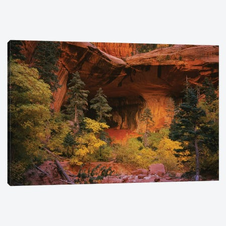 Trees in front of a cave, Zion National Park, Utah, USA 3-Piece Canvas #PIM15800} by Panoramic Images Canvas Artwork