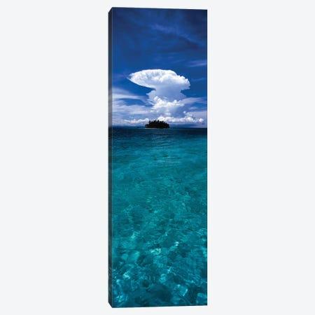 Trees on an island, San Blas Islands, Panama Canvas Print #PIM15802} by Panoramic Images Canvas Wall Art