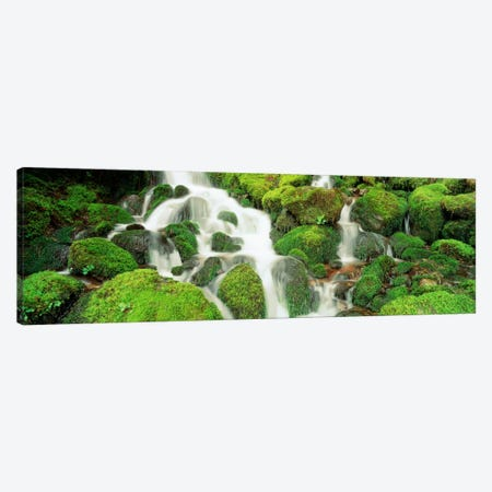 Sol Duc Falls, Olympic National Park, Washington, USA Canvas Print #PIM1580} by Panoramic Images Canvas Art