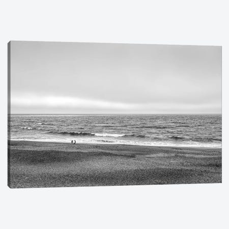 Two people and dog on beach at Point Reyes National Seashore, California, USA Canvas Print #PIM15812} by Panoramic Images Art Print