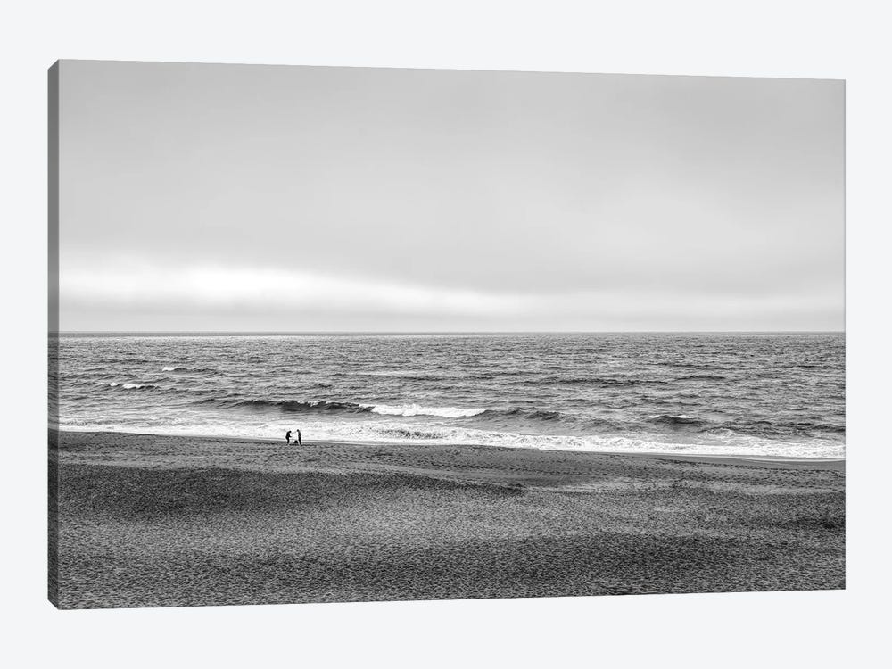 Two people and dog on beach at Point Reyes National Seashore, California, USA by Panoramic Images 1-piece Canvas Wall Art