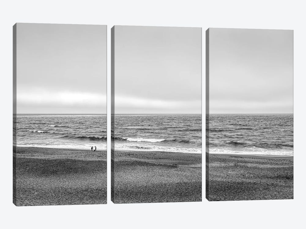 Two people and dog on beach at Point Reyes National Seashore, California, USA by Panoramic Images 3-piece Canvas Artwork