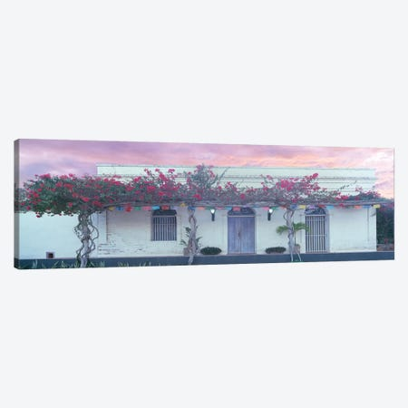 View of building with pergola, Todos Santos, Baja California Sur, Mexico Canvas Print #PIM15823} by Panoramic Images Canvas Art