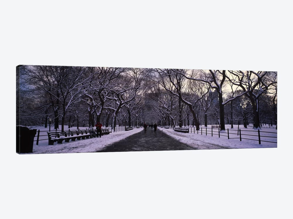 Bare trees in a parkCentral Park, New York City, New York State, USA by Panoramic Images 1-piece Canvas Art Print