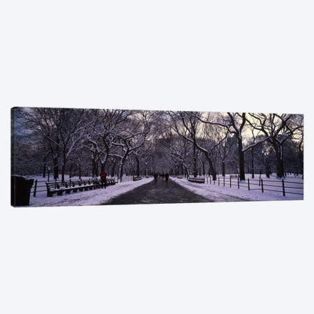 Bare trees in a parkCentral Park, New York City, New York State, USA 3-Piece Canvas #PIM1583} by Panoramic Images Canvas Art
