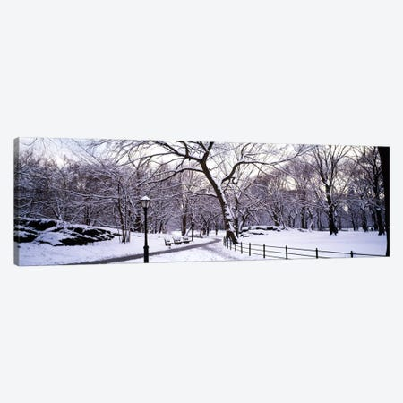 Bare trees during winter in a parkCentral Park, Manhattan, New York City, New York State, USA Canvas Print #PIM1584} by Panoramic Images Art Print