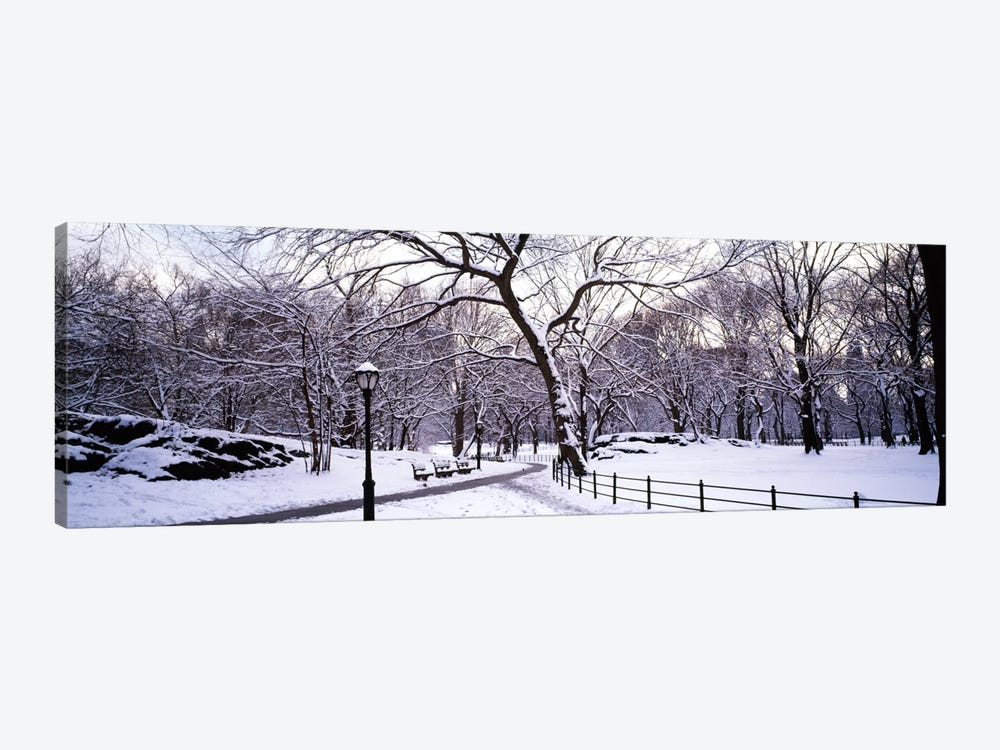 Bare trees during winter in a parkCentral Park, Manhattan, New York City, New York State, USA by Panoramic Images 1-piece Canvas Artwork