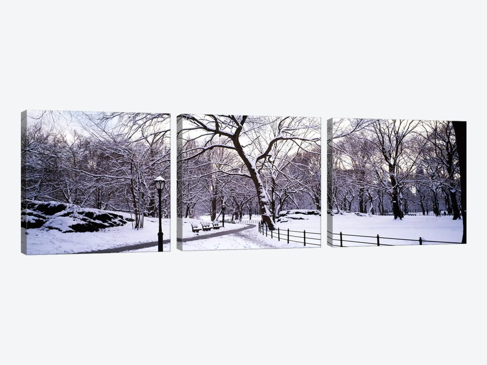 Bare trees during winter in a parkCentral Park, Manhattan, New York City, New York State, USA by Panoramic Images 3-piece Canvas Artwork