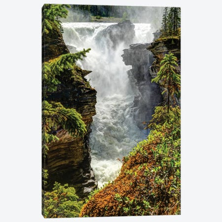 View of waterfall, Athabasca Falls, Athabasca River, Jasper National Park, Alberta, Canada Canvas Print #PIM15855} by Panoramic Images Canvas Art