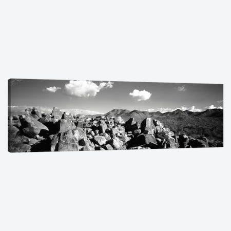 Boulders on a landscapeSaguaro National Park, Tucson, Pima County, Arizona, USA Canvas Print #PIM1585} by Panoramic Images Canvas Art Print