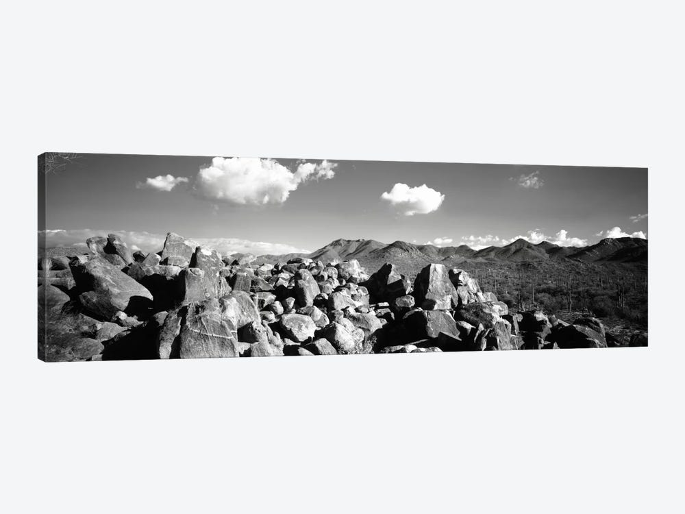 Boulders on a landscapeSaguaro National Park, Tucson, Pima County, Arizona, USA by Panoramic Images 1-piece Canvas Print