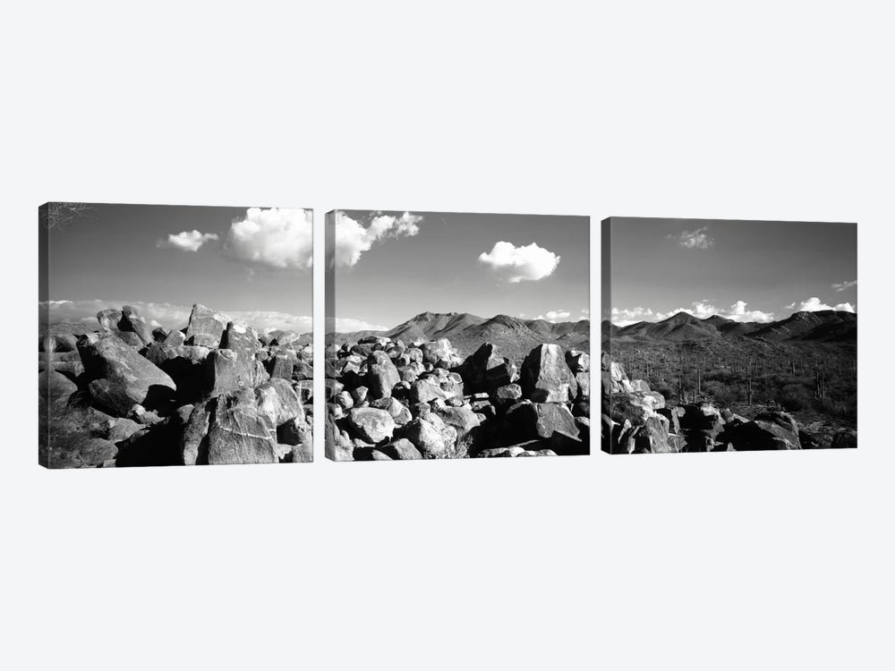Boulders on a landscapeSaguaro National Park, Tucson, Pima County, Arizona, USA by Panoramic Images 3-piece Canvas Art Print