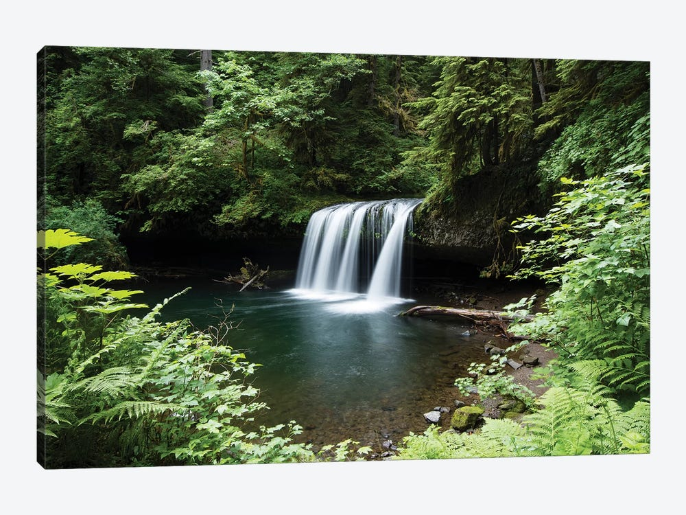 Waterfall in a forest, Samuel H. Boardman State Scenic Corridor, Pacific Northwest, Oregon, USA by Panoramic Images 1-piece Canvas Wall Art