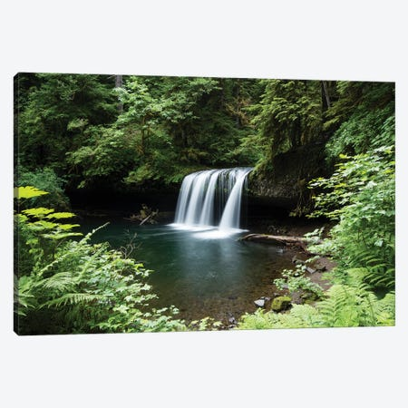 Waterfall in a forest, Samuel H. Boardman State Scenic Corridor, Pacific Northwest, Oregon, USA Canvas Print #PIM15861} by Panoramic Images Canvas Wall Art
