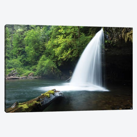 Waterfall in a forest, Samuel H. Boardman State Scenic Corridor, Pacific Northwest, Oregon, USA Canvas Print #PIM15862} by Panoramic Images Canvas Art