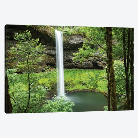 Waterfall in a forest, Samuel H. Boardman State Scenic Corridor, Pacific Northwest, Oregon, USA Canvas Print #PIM15864} by Panoramic Images Canvas Print